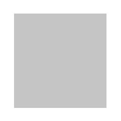 Icono ir a la web